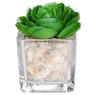 Modern Clear Glass Planter Pot Faux Plants