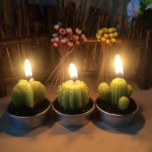Cactus Candles for Home Decor