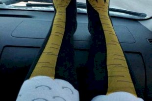 Chicken Legs Socks