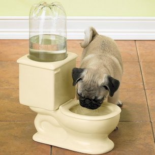 Dog and Cat Toilet Bowl
