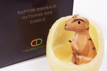 Raptor Dinosaur Hatching Egg Candle